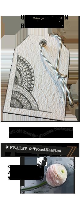 kracht-, troost- en bloemenkaarten