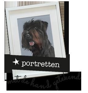 portret huisdier handgemaakt herinnering
